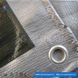 الصين [10إكس10] زرقاء [ب] مشمّع وقاية تغطية جانبا [شيت] [منوفكتثرر]