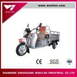 大人のための熱い販売の乗客48V800Wの電気三輪車
