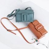Nuova signora arrivata 2017 di modo delle borse OEM/ODM di Shiling Handbag