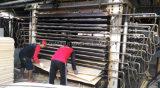 Núcleo de madera contrachapada máquina Secadora de Chapa Chapa prensa caliente de 15 capas de pelo