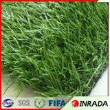 Gras van het Voetbal van het Gras van de Voetbal van de Hoogste Kwaliteit van de Leverancier van China het Natuurlijke Kunstmatige