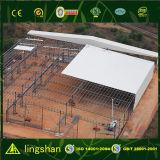 鋼鉄構造産業ホールの構築