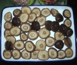 Fungo di Shiitake marinato inscatolato in alta qualità