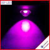 Commerce de gros 126W COB a conduit la Culture Hydroponique grow Usine de lumière pour l'intérieur