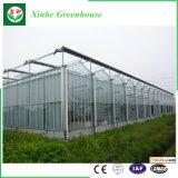 Casa verde de cristal del marco de aluminio con la azotea del arco/del triángulo