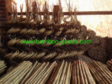 Gebogen Bamboe Pool
