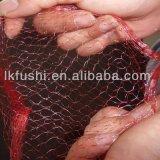 Sacchetto di plastica della maglia dei pp che fa l'espulsore della rete dell'imballaggio aglio/della macchina