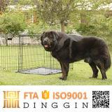 Im FreienmetallPartable Hundehaus