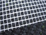Acoplamiento resistente de la fibra de vidrio del álcali del color verde de los materiales de construcción