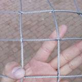 網を囲うステンレス鋼ロープのケーブルによって編まれる動物の動物園