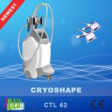 大広間の専門の減量のCryolipolisisボディはCriolpolisis機械をきつく締める