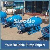 Assiale/ha mescolato la pompa d'asciugamento di galleggiamento del mezzo sommergibile di flusso per il fiume/raggruppamento