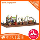 De openlucht Apparatuur van de Speelplaats van de Jonge geitjes van de Apparatuur van de Ontwikkeling