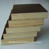 Núcleo de 15mm película enfrentados Plywoods hojas de los precios de la construcción