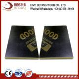 Mixwood Fargreen de haute qualité pour la construction de contreplaqué commercial