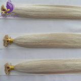 Estensione piana dei capelli di punta della cheratina italiana diritta serica bionda della cenere #60
