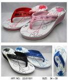 Personalizar Hombres Mujeres niños Dama zapatillas Flip Flop (22FY1002)