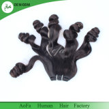 [غنغزهوو] [أوفا] صاحب مصنع عذراء إنسانيّة [فومي] شعب لأنّ [بلك وومن]