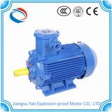 Motori elettrici protetti contro le esplosioni a tre fasi 15kw del collegare di rame di Ybx3 100%