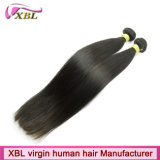 Estensione indiana dei capelli umani del giovane Virgin erogatore dei capelli