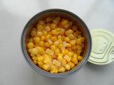 Delicioso maíz de granos dulces enlatados