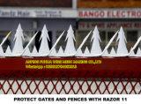 Защитите стробы и загородки с спайками бритвы