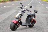 El chino de ruedas eléctrica Citycoco bicicleta eléctrica para la venta