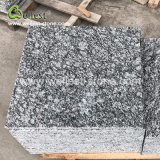 競争G602 G603 G655 G633のスプレーの床および壁のクラッディングのための磨かれた炎にあてられたブッシュによって槌で打たれる終わりを用いる白いJuparanaの灰色の花こう岩