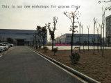 Blanc d'isolation thermique des matériaux de construction écologique Grg Panneau mural (GRG36)