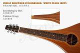 Guitare hawaïenne en gros de Weissenborn de corps de larme d'Aiersi