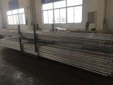 Faisceau en acier galvanisé d'échelle d'échafaudage pour l'échafaudage