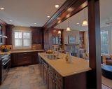 Деревянный деталь кухни лака с кладовкой