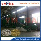 Intera linea di produzione di pelletizzazione macchinario di legno del laminatoio della pallina affinchè combustibile brucino
