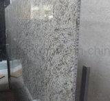 Léger Panneau alvéolé pour le luxe de granit Ferry/SHIP/navire