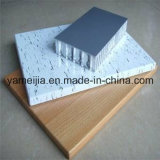 Panneaux en aluminium enduits de nid d'abeilles de rouleau de PE/PVDF pour les murs extérieurs et intérieurs