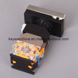 キー溝の照ら正方形ヘッドタイプ押しボタンスイッチ(LA118MLS)