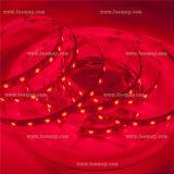 Bande chaude de la couleur SMD3528 DEL de la vente RVB avec lumineux superbe de CRI90+