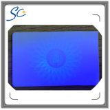 Invisível Cartão de plástico de impressão UV escondido