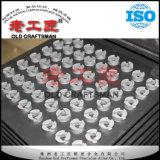 Wolframzementiertes Karbid-Schlamm-Düse für Ölquelle-Bohrung