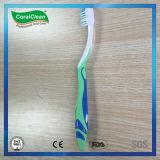 Toothbrush dei piccoli adulti capi di cura orale con la grande maniglia