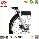 De vélo électrique neuf de la plage 2017 gros E-Vélo de batterie au lithium de bicyclette de pneu 500W avec la pédale