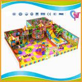 De beste Verkopende Speelplaats van de Jonge geitjes van de Fabrikant van China Binnen voor Pretpark (a-15286)