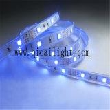 Cinta ultrabrillante de la luz de 5050 LED, luz de tira 5050
