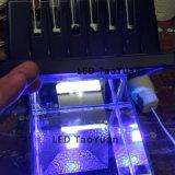 紫外線LED軽い365nm 20Wランプの治癒