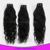 [وهولسل بريس] موجة طبيعيّة [برزيلين] عذراء شعر
