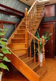 Natürliches Umweltschutz-Baumaterial-Möbel-festes Holz-Treppenhaus
