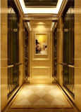 Decoração do carro de Luxary, baixo ruído que trabalha o elevador de confiança do passageiro