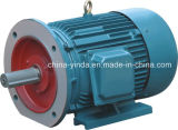motore elettrico a tre fasi 3/4-270HP