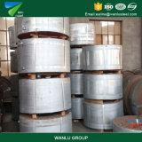 Kaltgewalzte rostfreie galvanisierte Stahl-Streifen