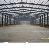 Almacén acanalado de la estructura de acero del palmo grande de la hoja de acero (DG1-037)